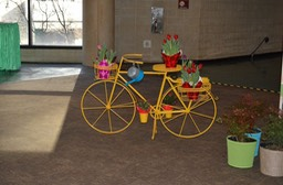 bicycle with plants