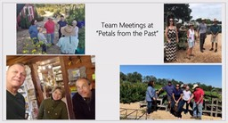 Team meetings at Petals from the Past